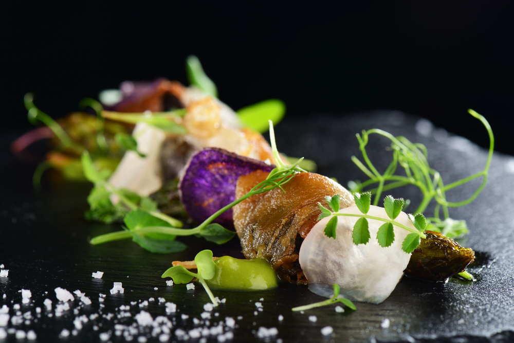 El arte de la gastronomía en servicios de catering